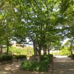 池田市豊島野公園