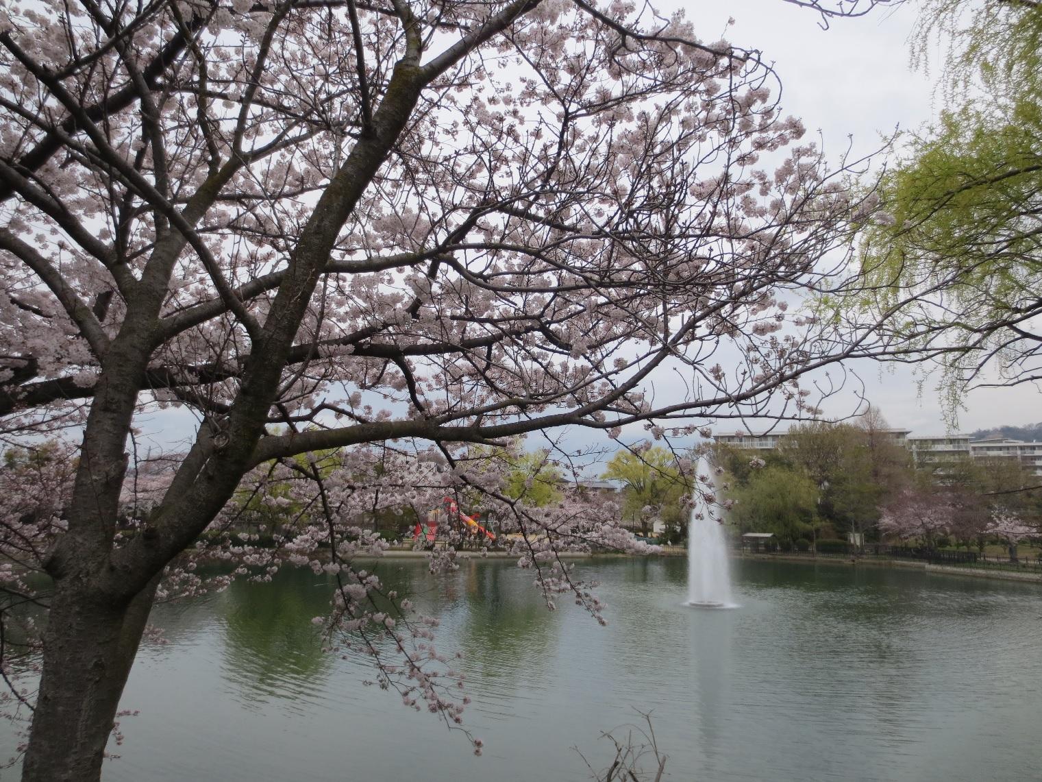 池田市 水月公園